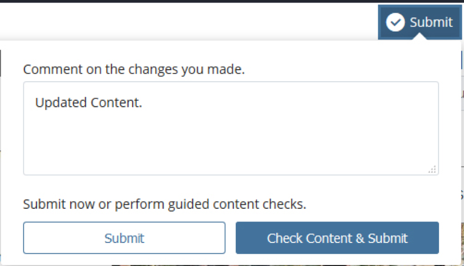 screenshot of submit window in cascade cms